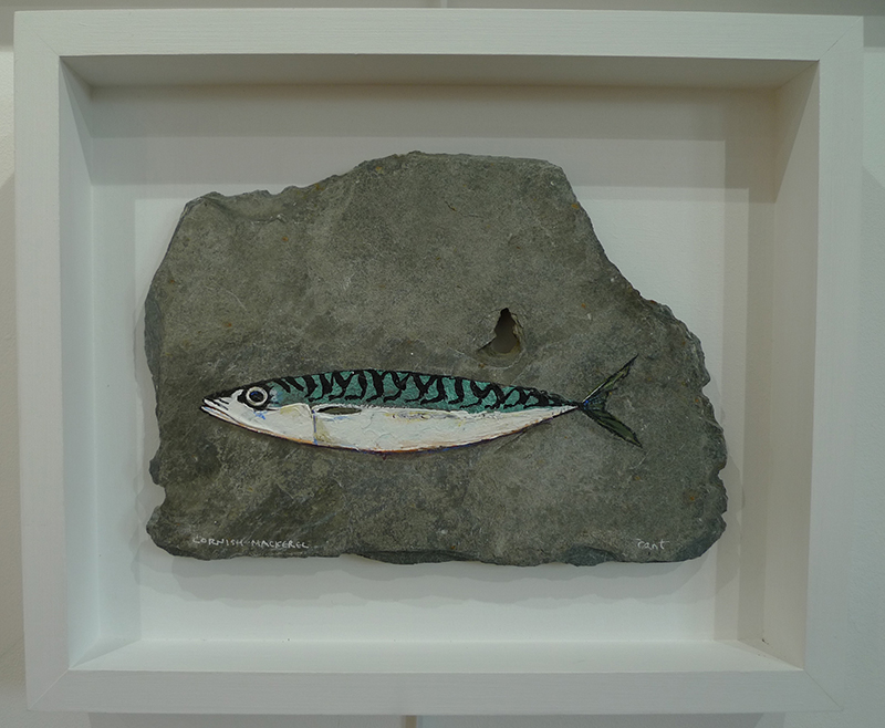 FRAMED MACKEREL ON SLATE